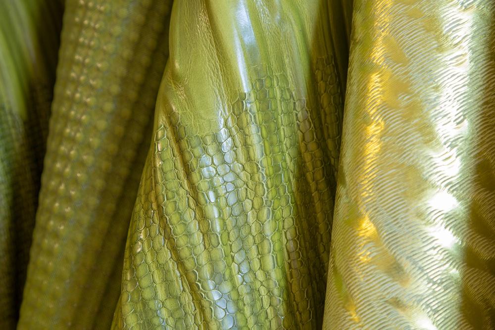pellame conciato al vegetale
